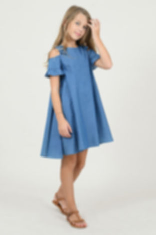 53022-denim-flare-dress.jpg