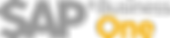 SAP_BOne_R_1.png