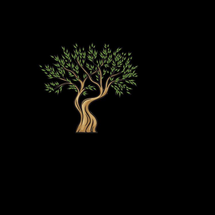 3° Seminário de Olivicultura de Encruzilhada do Sul