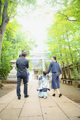 hashimoto179.jpg