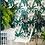 Thumbnail: Banana Palms Wallpaper