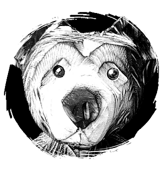 Bear Country Gifts -Chainsaw Carvings-1_edited.png