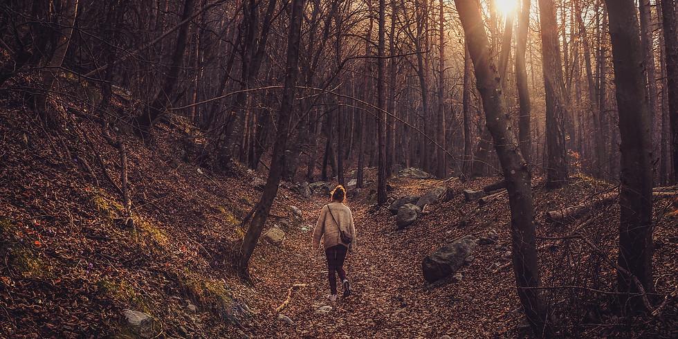 Wandeling Herfst Bliss (14-17u)