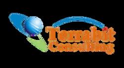Terrabit logo