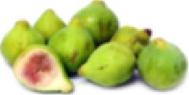 kodota figs.png