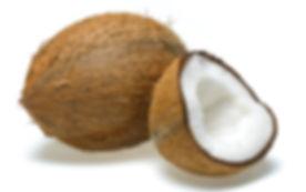 coconut_2857102k.jpg