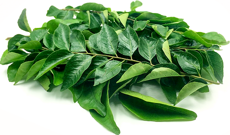 curryt leaf.png