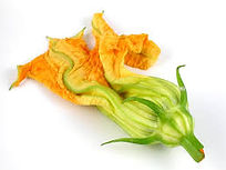 squash bloosom.jpg