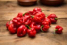 habanero-red_westlandpeppers-1.jpg