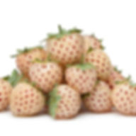 Wonderful-Pineberry-450w.jpg