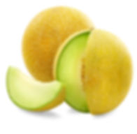 Melon-galia.jpg