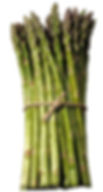 standardasparagus - Copy.jpg