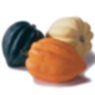 acornsquash.jpg