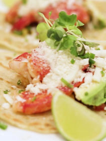Irresistible Lobster Tacos at Eddie V's Tampa