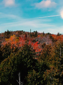 Fall in Michigan is Gorgeous