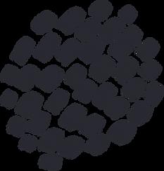 patterned_shape_18.png