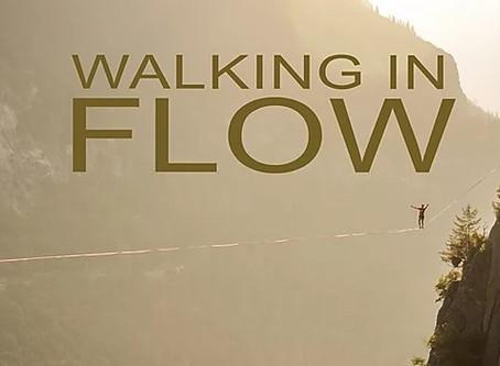 Let's get somethings straight | Walking in Flow