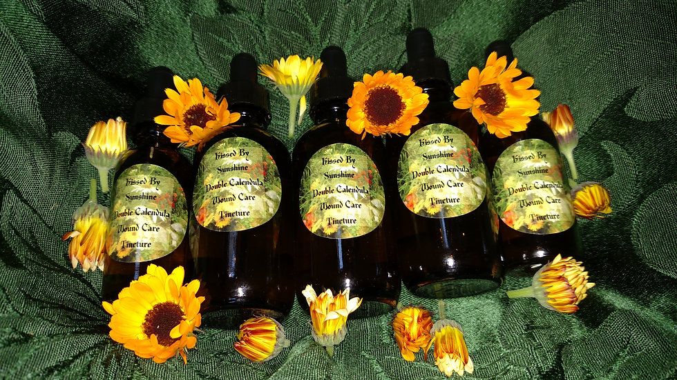 Kissed By Sunshine Double Calendula Wound Care Tincture 2oz