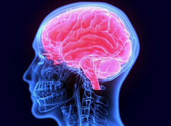 The Conscious & Unconcious Minds