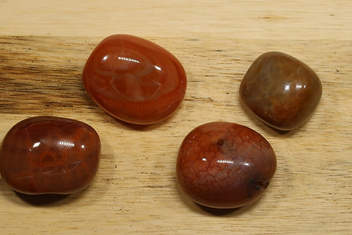 Agate peau de serpent rouge