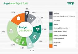 Infographic-TYE-Budget-speech-032015.jpg