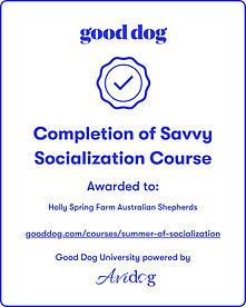 savy socialization