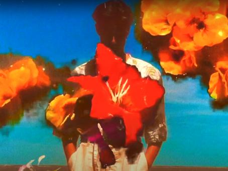 Mimosa. The first single by Nicolas Dax. Découvrez l'hymne de l'amour et de l'été.
