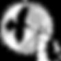 RavenWolf Logo