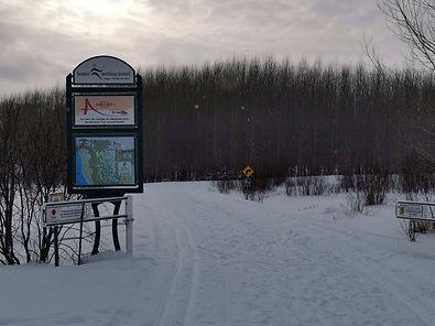 Ski.fond.la.sarre.jpg
