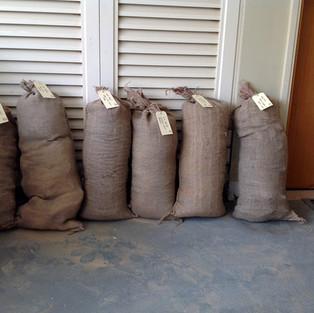 clay_bags.jpg