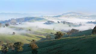 Anyák versus köd