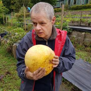 Michaelmas and Autumn Harvest