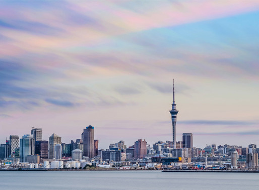 June's Auckland Property Sales Defy Forecasts