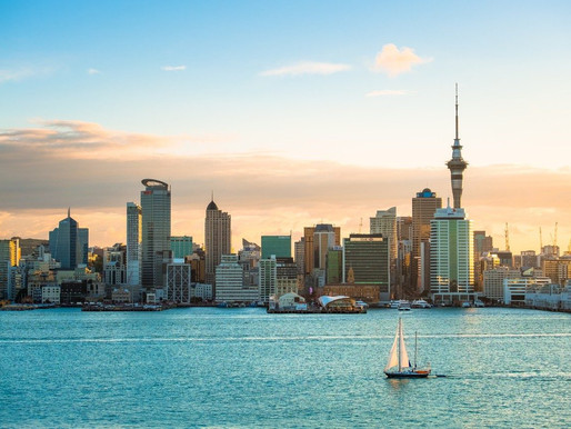 Committed Buyers Drive Increased Competition For Auckland Property