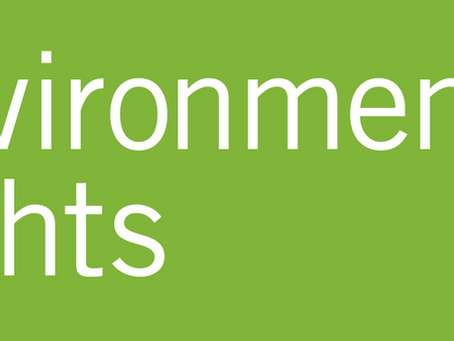 New Brand: Environmental Lights