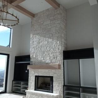 Omega Fireplace