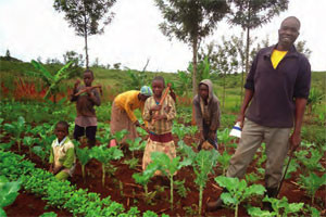 Family farming.jpg