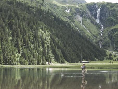 Die zehn besten Reiseziele für alle, die Wildnis lieben