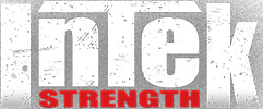 Intek-logo-156px.png
