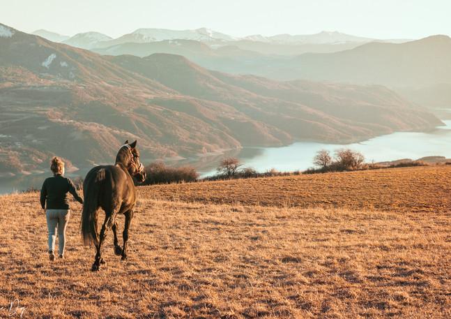 Balade avec cheval au couché du soleil
