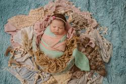 Auckland Studio Newborn Photography