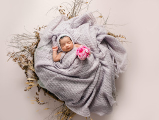 Where do I Get All My Props and Accessories for My Newborn Photography?