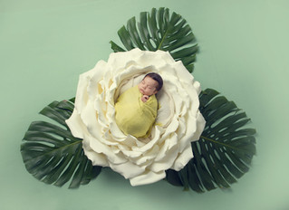 Newborn photoshoot - posed vs candid. What's the difference?