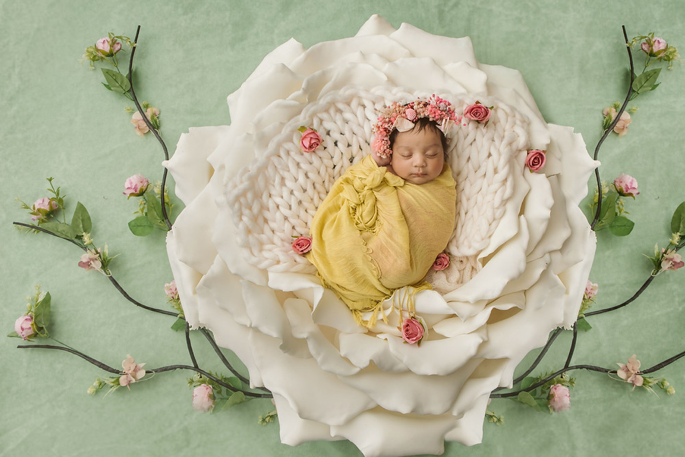studio newborn photography auckland