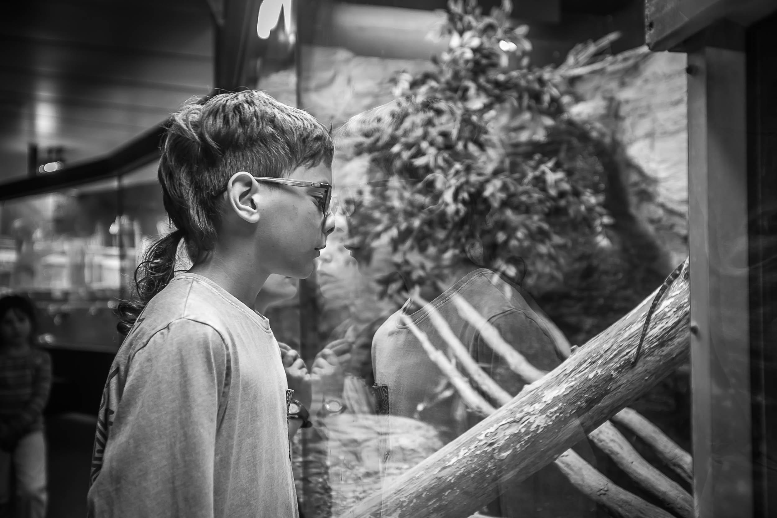 indoor portrait of a child boy