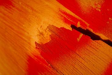Red tree cut