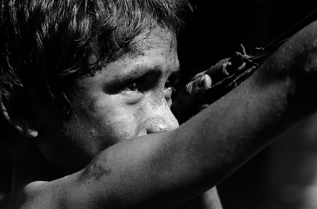 Boy shooting iguanas with slingshot