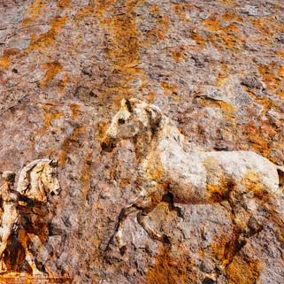Horse mural.jpg