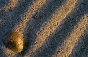 Sunny stone