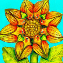 Lovebird Sunflower 1